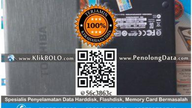 Recovery Data Harddisk Eksternal 1 TB – Nur STIESIA