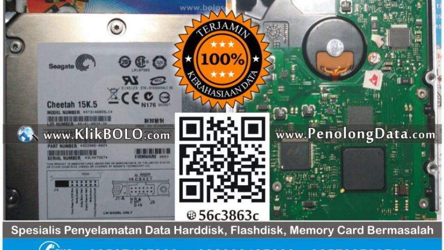 Recovery Data Harddisk SCSI Seagate 140 GB Koperasi Warga Semen Gresik
