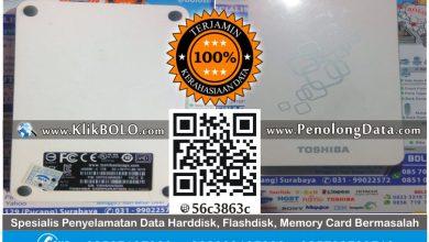 Recovery Data Harddisk Toshiba 1TB Yunan Eko Nugroho Malang