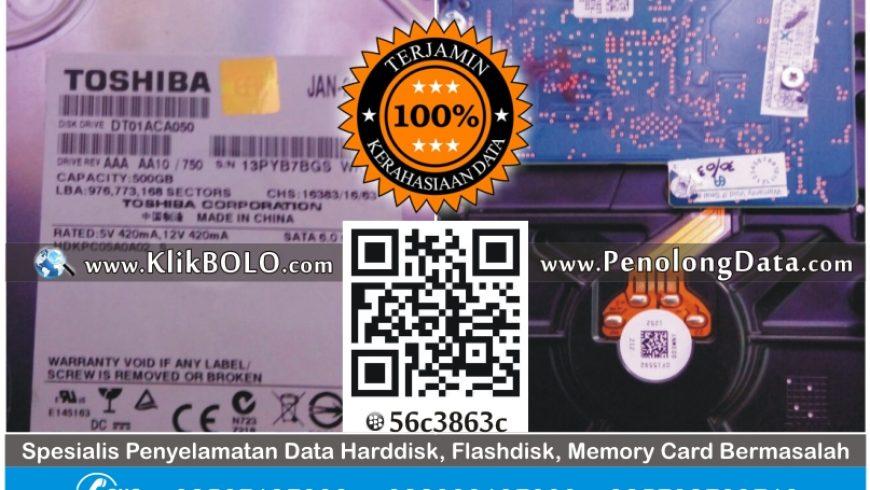 Recovery Data Harddisk Toshiba 500GB PT Hadji Kalla Makasar
