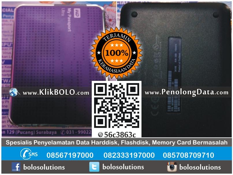 Recovery Data Harddisk Ekstenal WD 2TB Aditya Priangga Tama Semarang