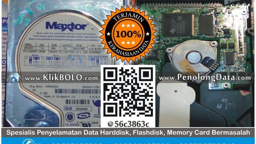 Recovery Data Harddisk Maxtor 20GB Yuli Setyo Pucang Adi