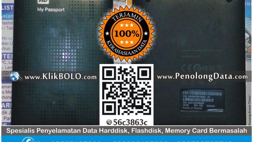 Recovery Data Harddisk Eksternal WD 1TB Ansari Sampit