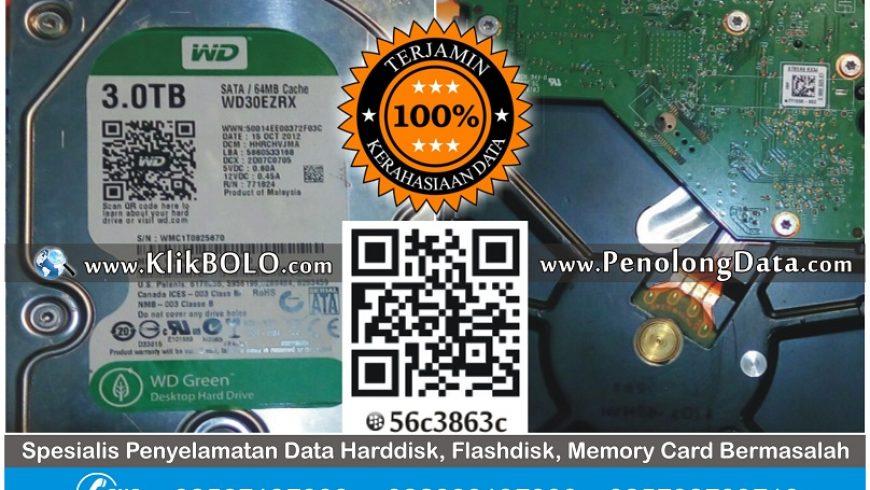 Recovery Data Harddisk Internal WD 3TB Yanuar Darmo Surabaya