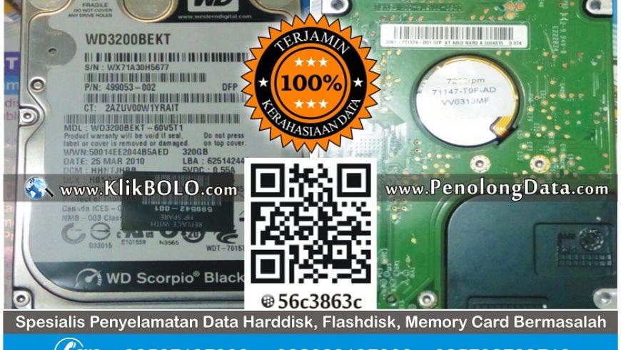 Recovery Data Harddisk WD Black 320GB Surahyo Bojonegoro