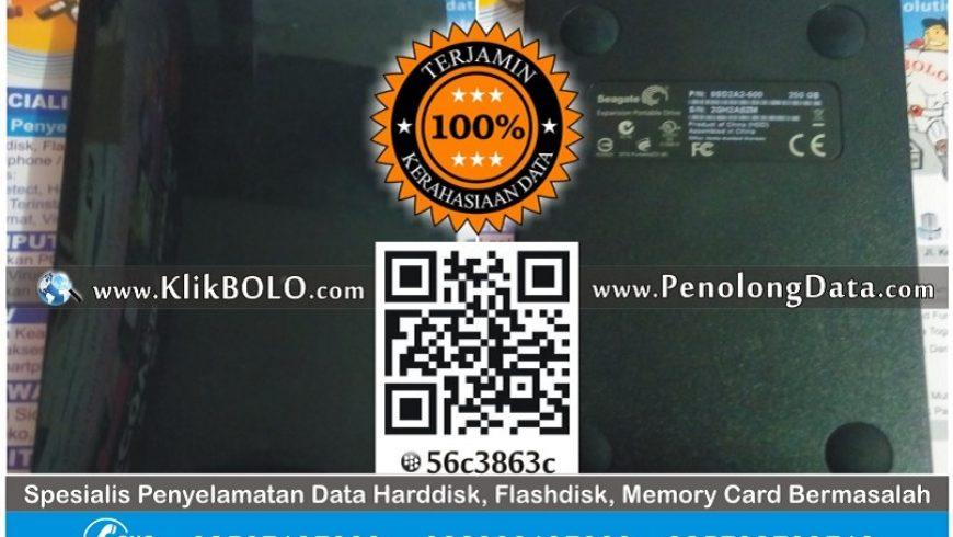 Recovery Data Harddisk Eksternal Seagate 250GB Hendy Susilo Darmo