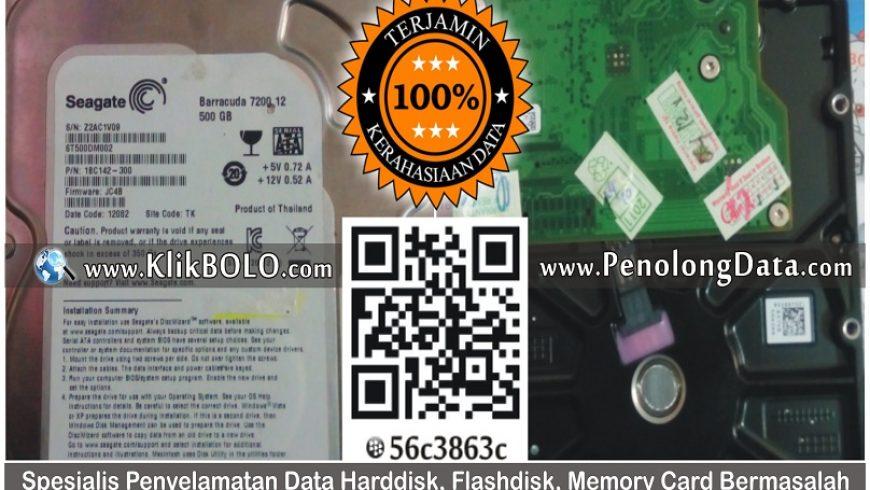 Recovery Data Harddisk Seaagate 500GB Harfendi Sudin Darmo