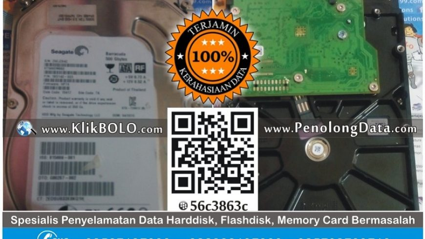 Recovery Data Harddisk Seagate 500GB Tutik Mahsunah Surabaya