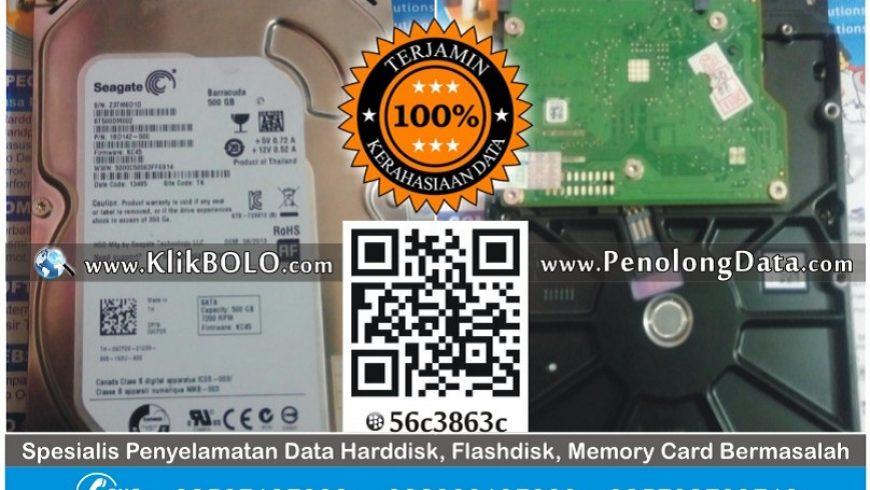 Recovery Data Harddisk Seagate 500GB Suparno Kupang Surabaya