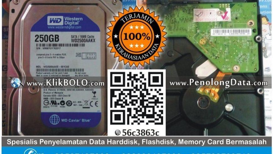Recovery Data Harddisk WD 250GB PT Mikatasa Agung Surabaya
