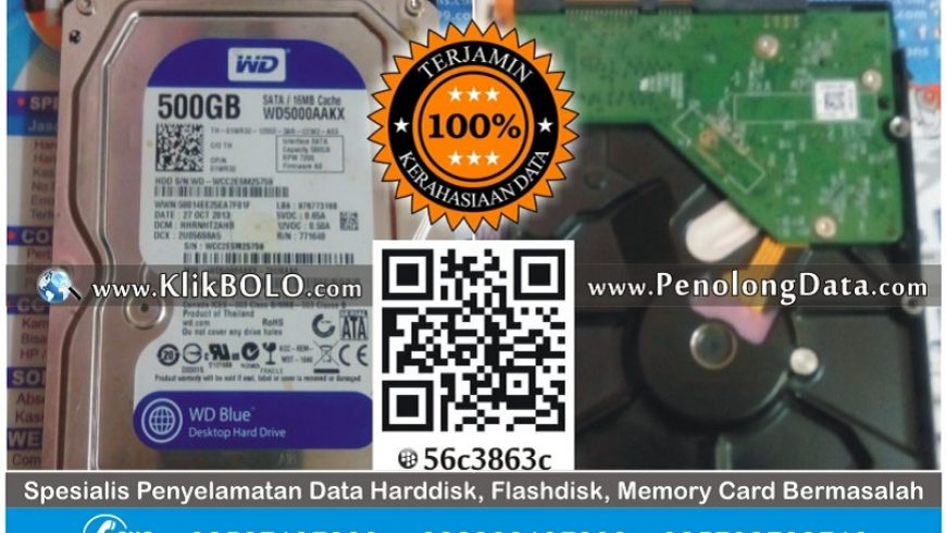 Recovery Data Harddisk WD 500GB Tutik Mahsunah Surabaya