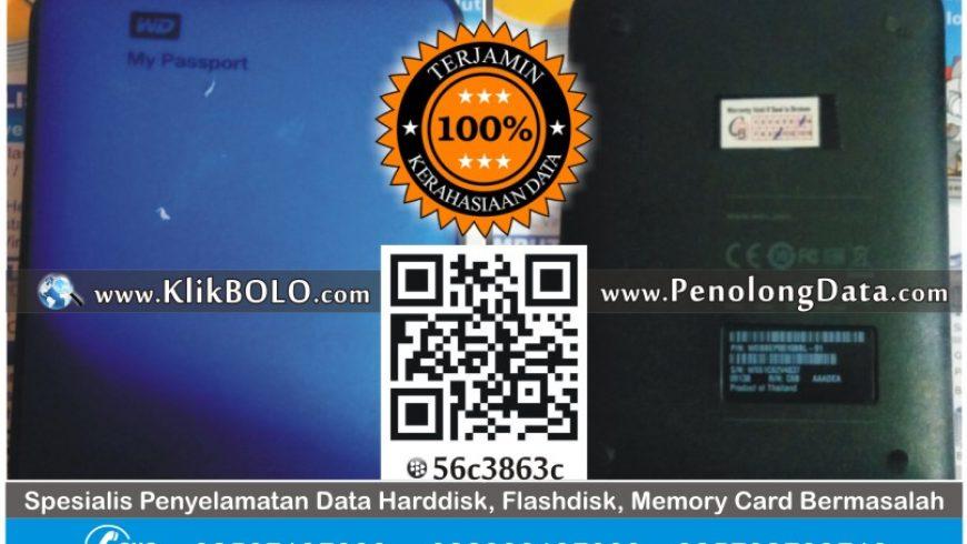 Recovery Data Harddisk WD 1TB Agung Satria Surabaya