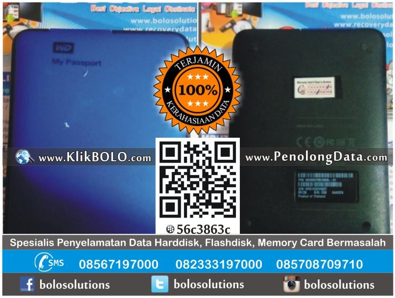 Recovery Data Harddisk WD My Pass 1TB Agung Satria Surabaya
