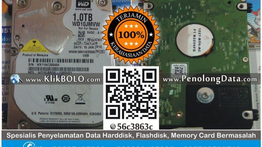 Recovery Data Harddisk WD Black 1TB Fitriansyah Lamongan