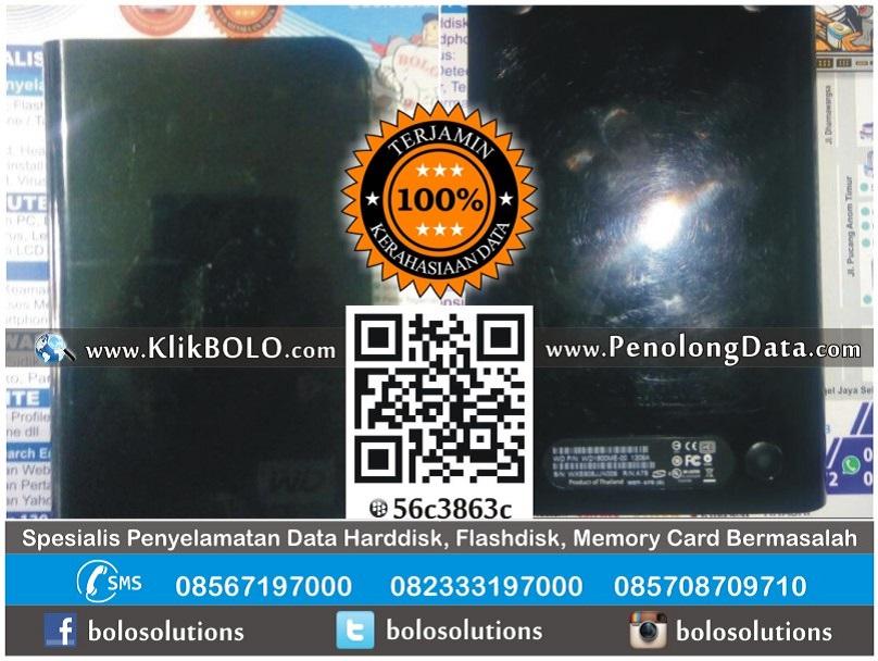Recovery Data Harddisk WD 160GB Benny Sukamto Surabaya