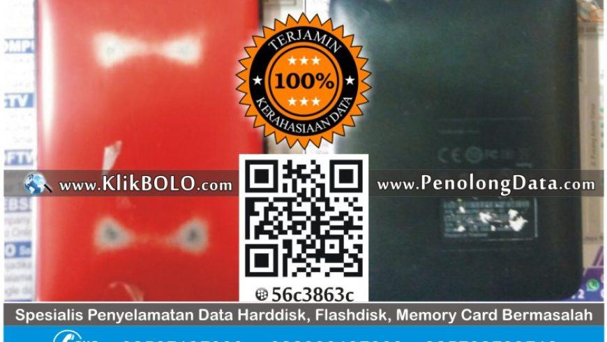 Recovery Data Harddisk WD 500GB Zaenal Arifin Paramita Lab