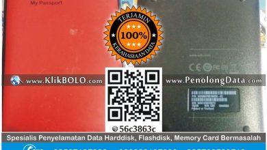 Recovery Data Harddisk WD 1TB Roynther Ayub PT PJB Sidoarjo