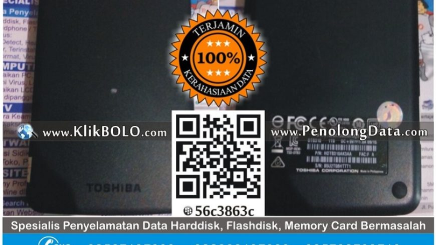 Recovery Data Eksternal Harddisk WD 1TB Tiara Pracillia Surabaya