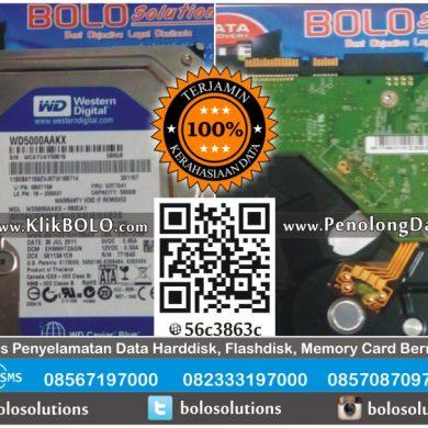 Recovery Data Harddisk WD 500GB Samsul Arifin PT Kopindo Gresik