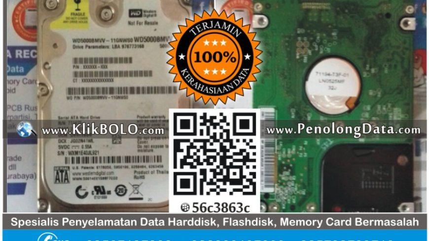 Recovery Data Harddisk WD 500GB Norton Bali Computer