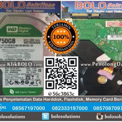 Recovery Data Internal Harddisk WD 750GB Chilwin Theodoroes Surabaya