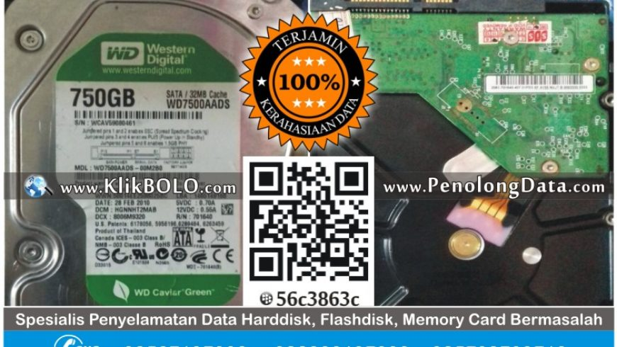 Recovery Data Internal Harddisk WD 750GB Chilwin Theodoroes Surabaya