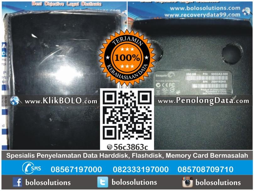 Recovery Data Harddisk Seagate 250GB Riyan Muhadi Surabaya