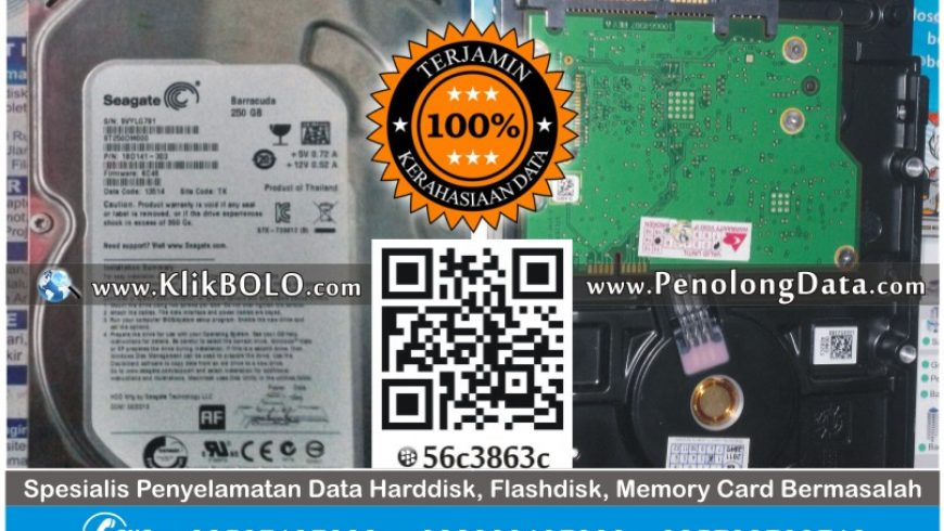 Recovery Data Harddisk Seagate 250GB Roni Yuliatno Surabaya