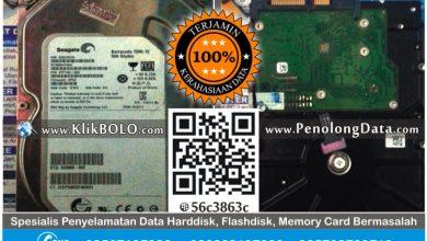 Recovery Data Harddisk Seagate 500GB Nizar Wahyu Surabaya