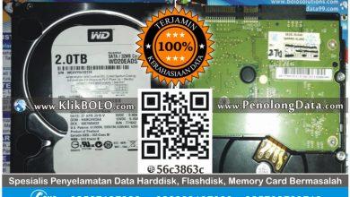 Recovery Data Harddisk Internal WD 2TB Angga Rubady Surabaya
