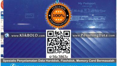Recovery Data Eksternal Harddisk WD 1TB Difa Amalia Cinere Depok