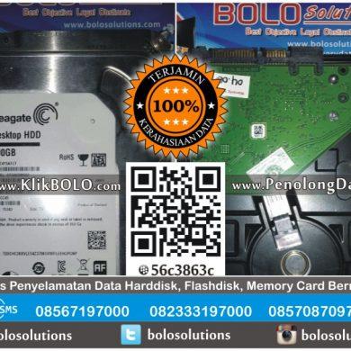 Recovery Data Harddisk Internal Seagate 500GB Agung Pandaan
