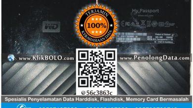 Recovery Data Harddisk Eksternal WD 2TB Galih Zahki Malang