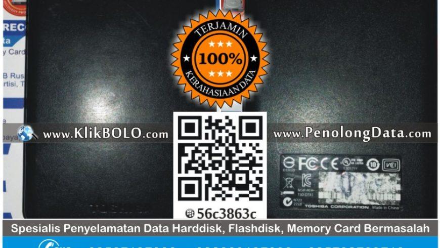 Recovery Data Harddisk Eksternal Toshoba 1TB Priyo Utomo Lumajang