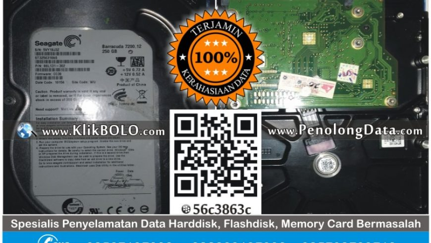Recovery Data Harddisk Internal Seagate 250GB Luxi Hari Tulungagung