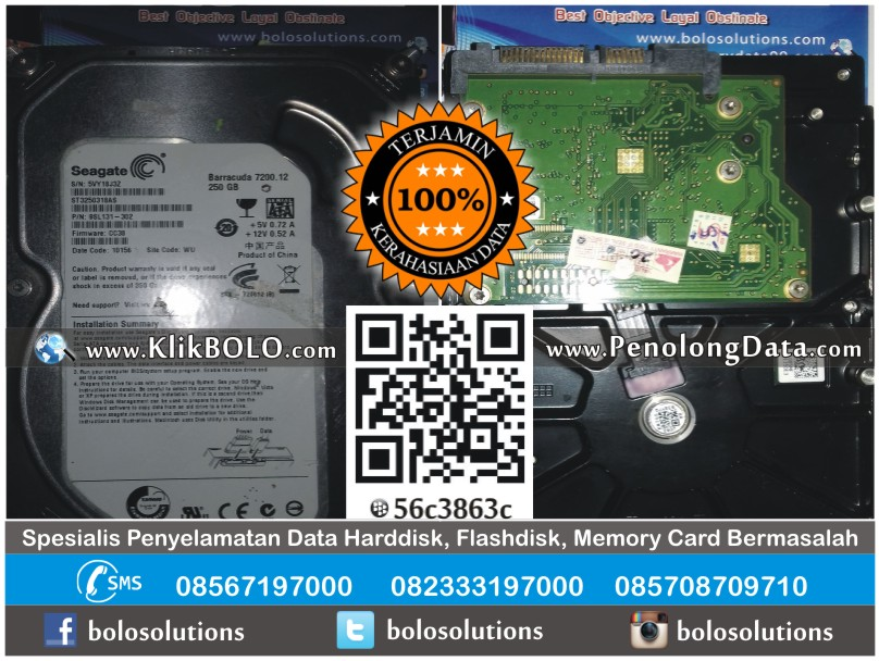 Recovery Data Harddisk Internal Seagate 250GB Luxi Hari Tulungagung