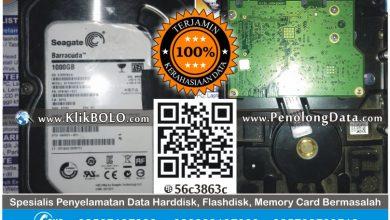 Recovery Data Harddisk Internal Seagate 1TB Ellym B Sidoarjo