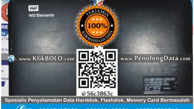 Recovery Data Harddisk Eksternal WD 1TB Yohan Porong SDA
