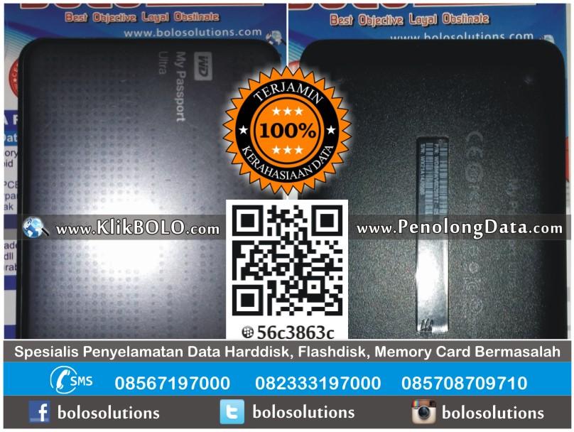 Recovery Data Harddisk Eksternal WD 2TB Erlynche Medan