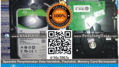 Recovery Data Harddisk Internal Seagate 1TB Steven Surabaya