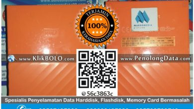 Recovery Data Harddisk Eksternal WD 2TB Agus Tjahjono Malang