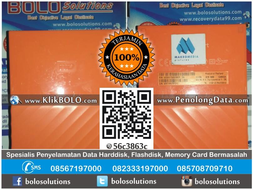 Recovery Data Harddisk Eksternal WD 2TB Agus Tjahjono Malang