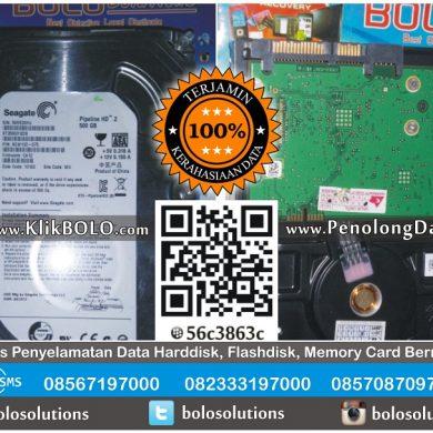 Recovery Data Harddisk Internal Seagate 500GB Sarwo Edi Tuban