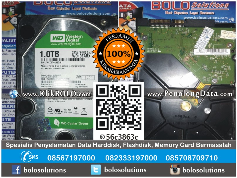 Recovery Data Harddisk Eksternal WD 1TB Erick P Mojokerto
