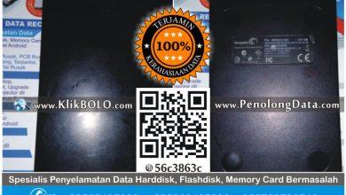Recovery Data Harddisk Seagate 250GB Agus S PT Cipta Boga Prima
