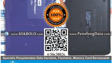 Recovery Data Harddisk Eksternal WD 1TB R Gatot Ketintang