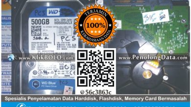 Recovery Data Harddisk WD 500GB Rizqi PT Petrokopindo Gresik