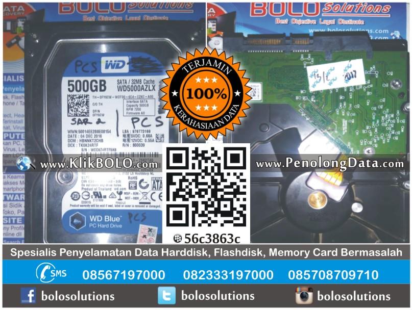 Recovery Data Harddisk WD 500GB Rizqi PT Petrokopindo Gresik