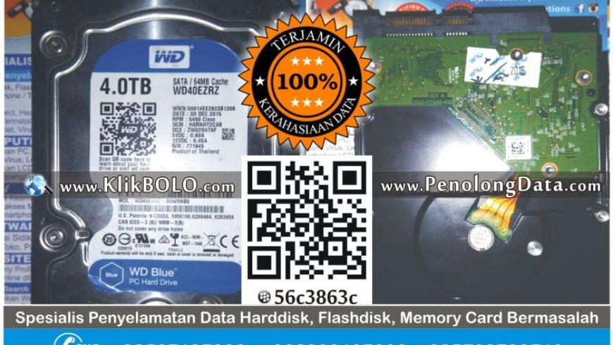 Recovery Data Harddisk WD 4TB Sandy Pondok Gontor Ponorogo