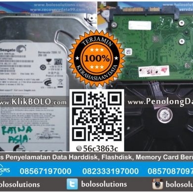 Recovery Data Harddisk Seagate 250GB Livaldi PT Ratna Asia Surabaya